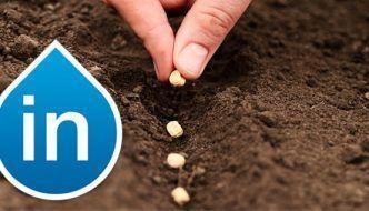 Estrategia de contenido para buscar trabajo en Linkedin – oportunidades Profesionales