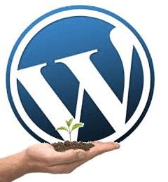 Como empezar a crea un blog