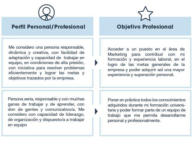 perfil profesional objetivo profesional
