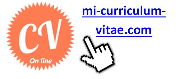 Mi-curriculum-vitae