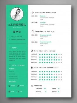 mejores plantillas curriculum infografico word
