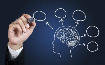 Neurociencia aplicada recursos humanos
