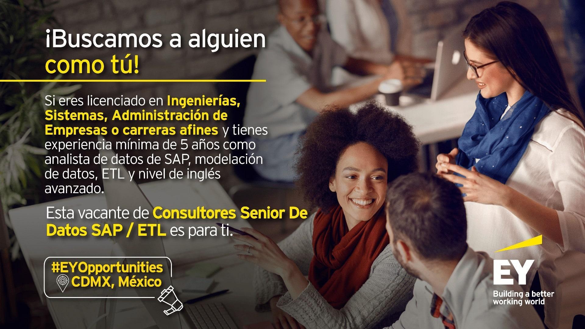 Consultor Senior de Datos SAP / ETL
