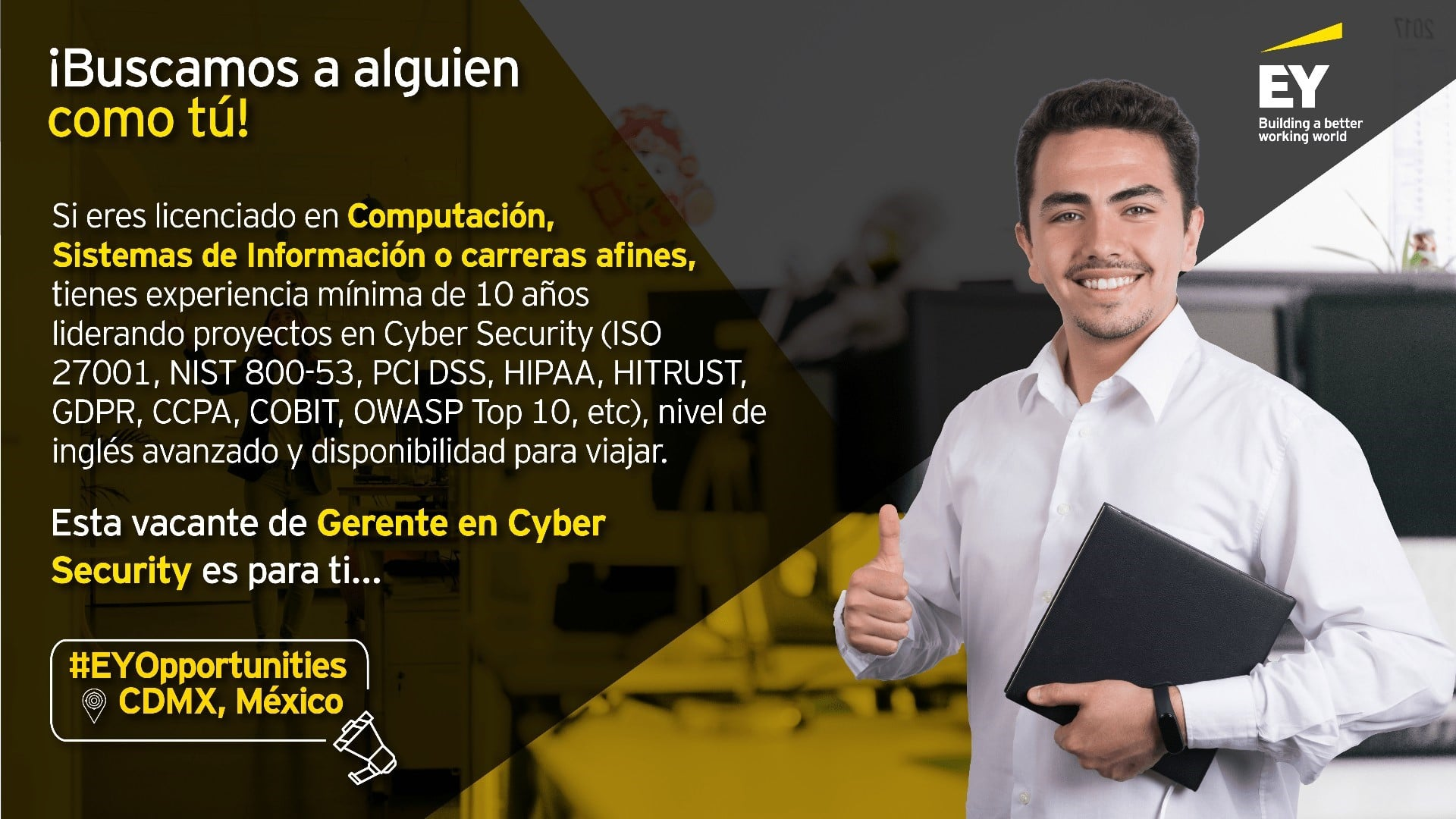 Gerente en Cyber Security