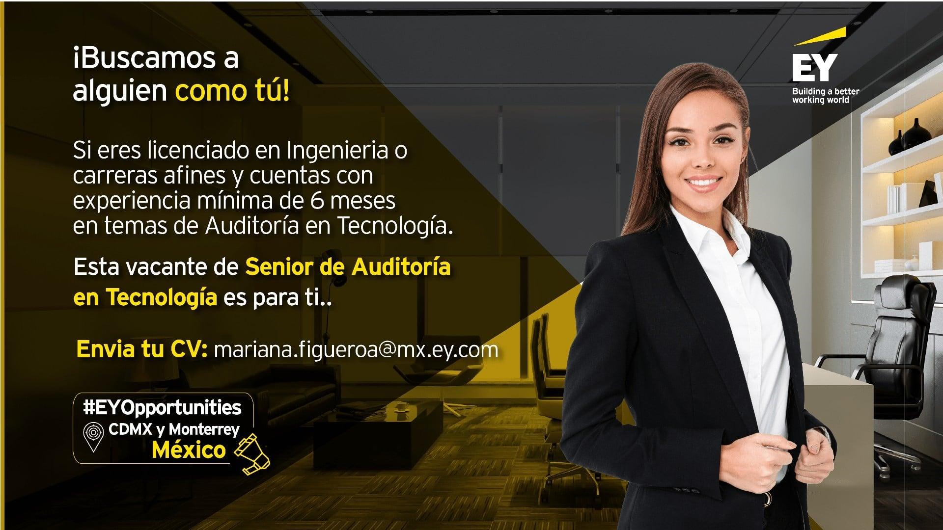 Senior de Auditoría en Tecnología