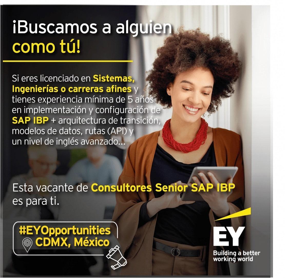Consultor Senior SAP IBP