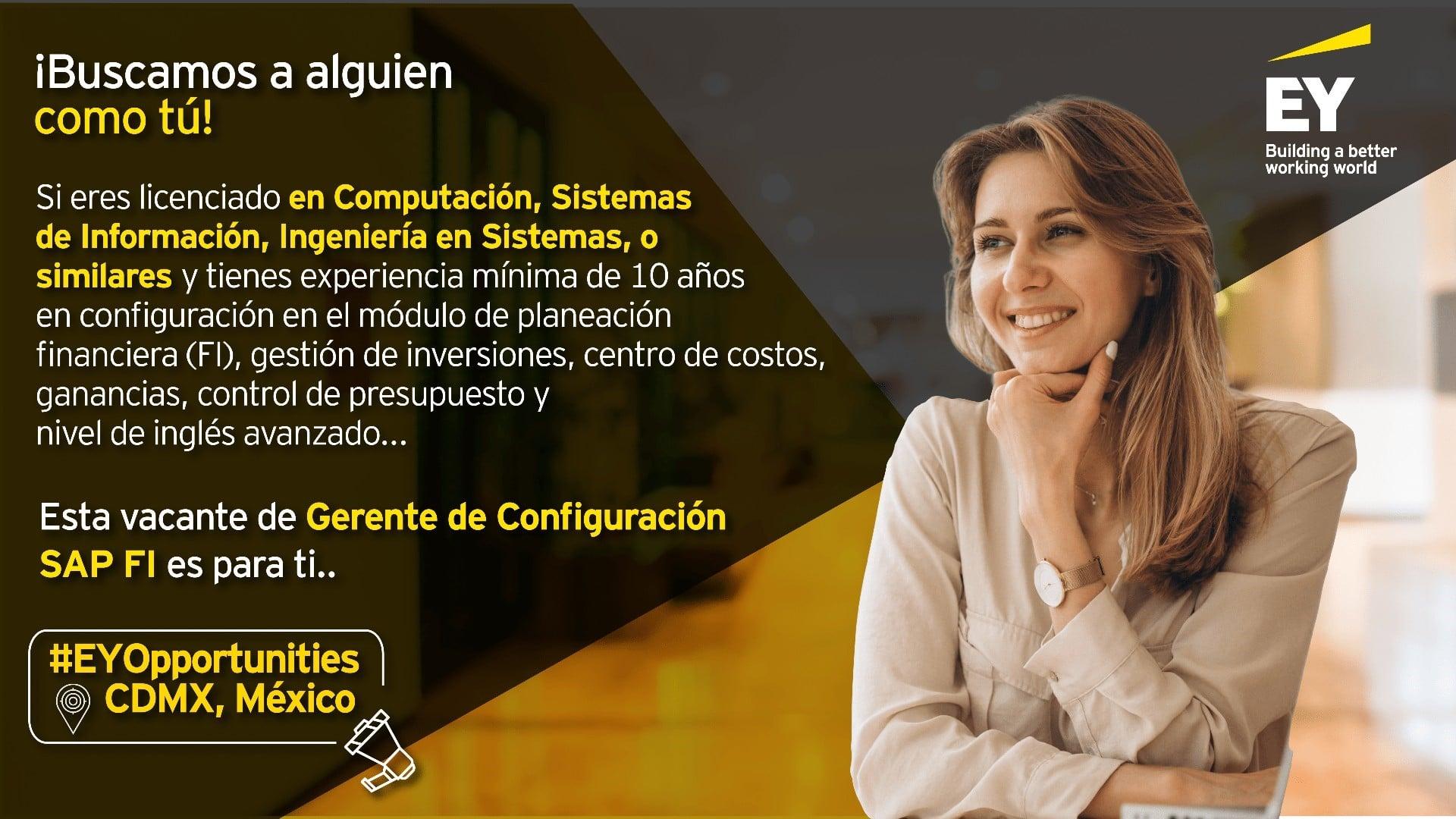 Gerente de Configuración SAP FI