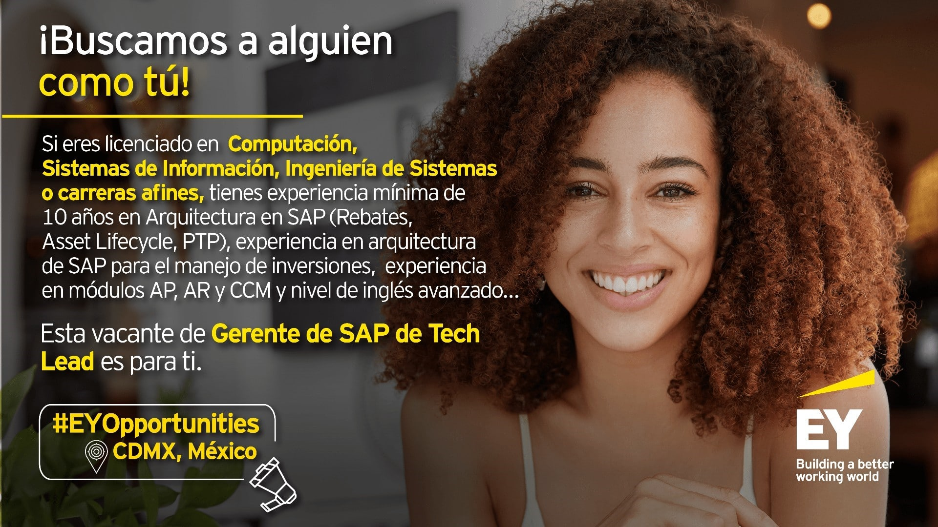 Gerente de SAP TECH